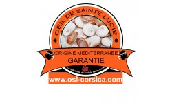 Bracelet chaine argent et oeil de sainte lucie méditerranéen